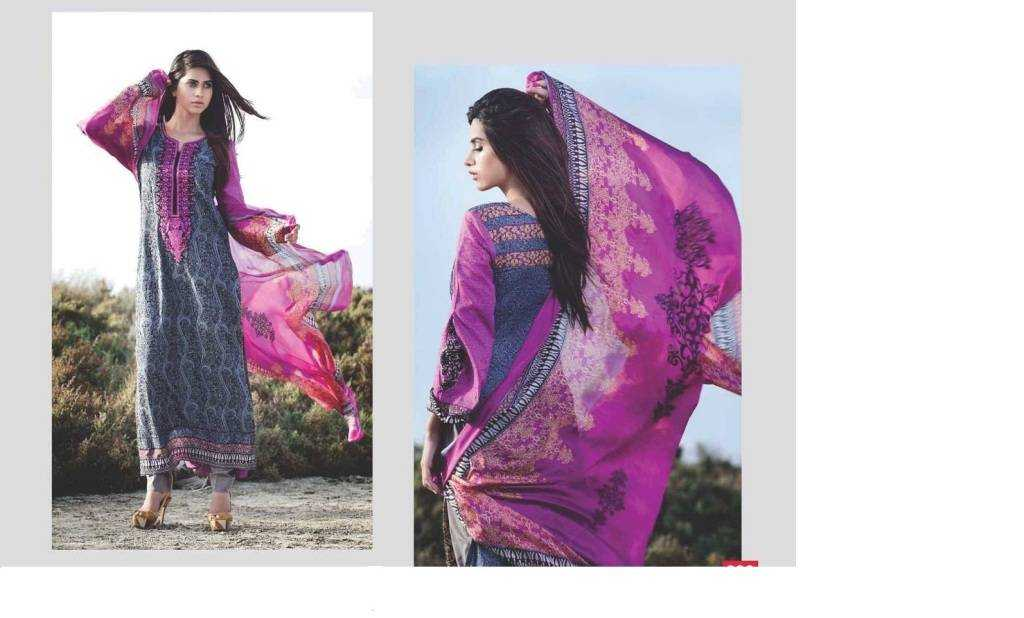 Deeba Designer Embroidered Collection 2014 by Shariq Textiles 162 1024x618 - The Pakistani Influence