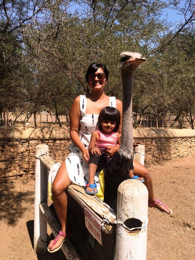 Ostrich Ride 768x1024 - Road Trip In South Africa Part-2 (Garden Route and Cape Town)