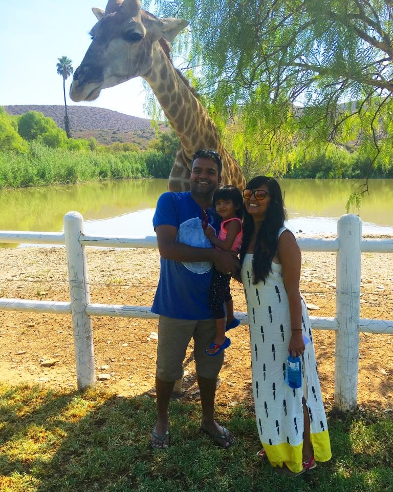 Shorty Giraffe - Road Trip In South Africa Part-2 (Garden Route and Cape Town)