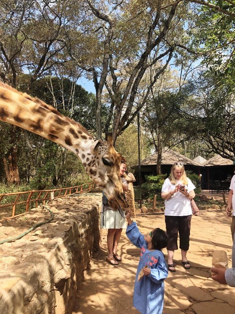 Kenya 14 768x1024 - Planning a trip to Kenya- Hakuna Matata ;)