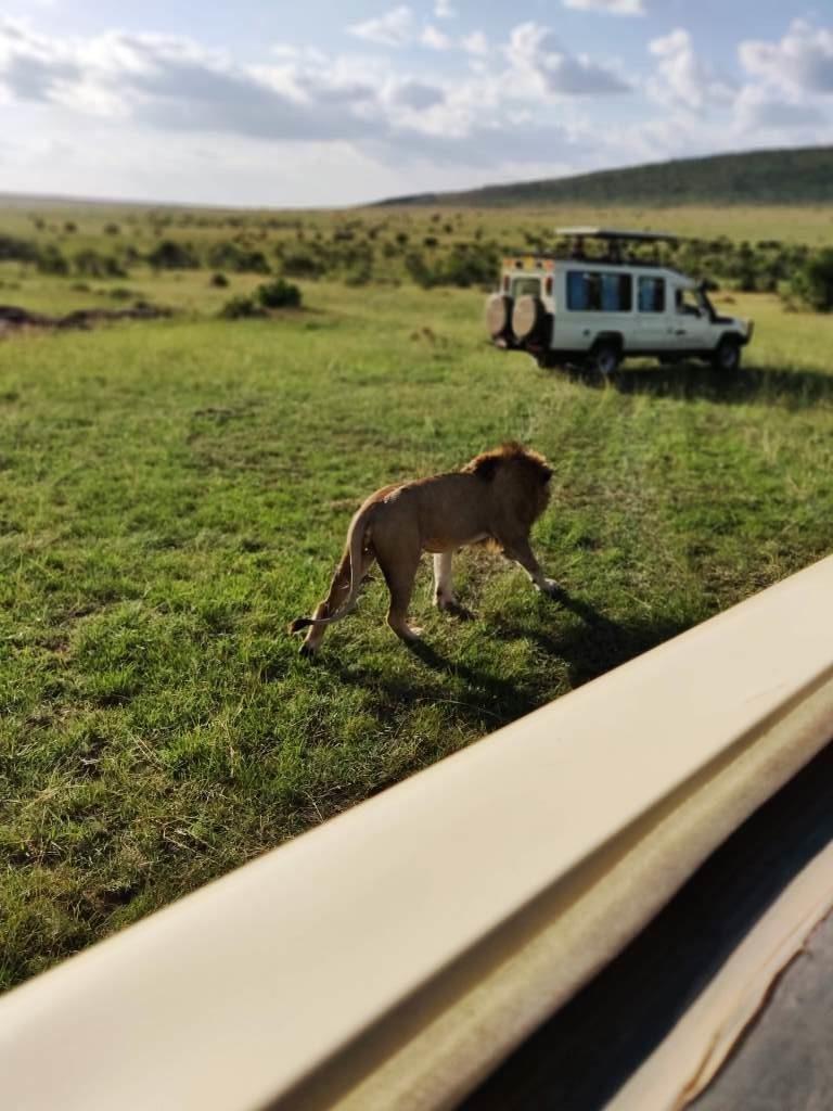 Kenya 32 768x1024 - Planning a trip to Kenya- Hakuna Matata ;)
