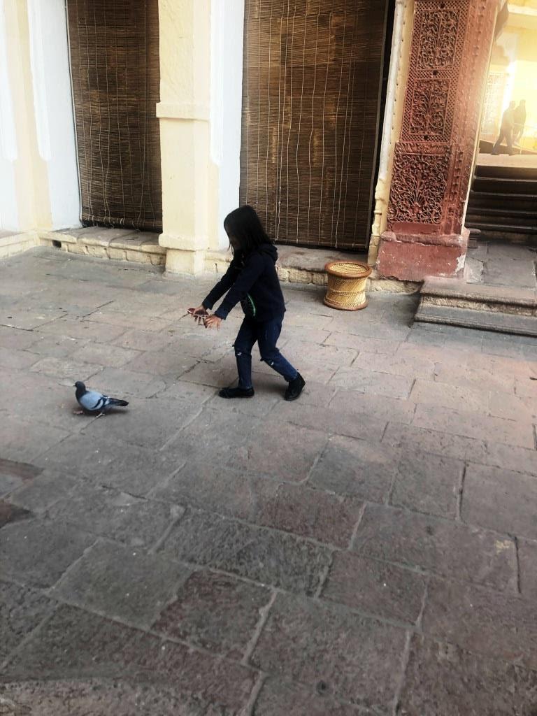 Jodhpur 023 e1581416122139 - Jodhpur & Jaisalmer- Padharo Mhare Des